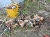prima-boata-extreme-29-30-marzo2008-002