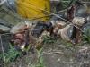 prima-boata-extreme-29-30-marzo2008-007