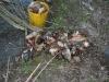 prima-boata-extreme-29-30-marzo2008-008